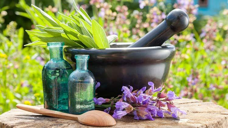 انواع طب سنتی تاریخچه طب سنتی تاریخچه طب سنتی و انواع طب سنتی herbal medicine 1